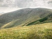 Ostredok, Veľká Fatra (SVK) - NE slope.jpg