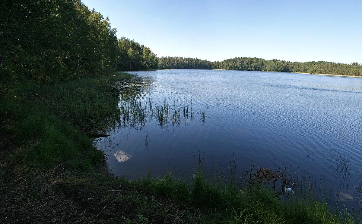 Järviallas