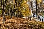 Pörtschach Halbinselpromenade Buchenwald am Landspitz 28102017 1768.jpg
