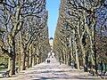 P4040029 Paris V jardin des plantes reduct.jpg