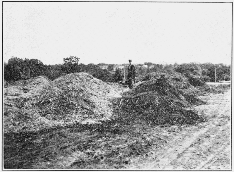 File:PSM V81 D049 Horse manure piles in the suburbs.png