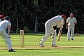 Pacific CC v Chigwell CC at Crouch End, London, England 5.jpg