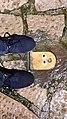 Pacman Muro.jpg