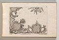 Page from Album of Ornament Prints from the Fund of Martin Engelbrecht MET DP703574.jpg