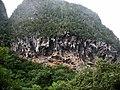 Palenque de los Cimarrones - panoramio.jpg