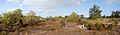 Panorama juan de Nova 02.jpg
