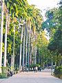 Parque Ayacucho. Cumaná, Edo. Sucre.jpg