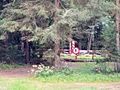 Parque Nacional de Białowieża - Frontera Polonia - Bielorrusia (32846361173).jpg