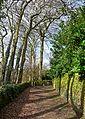 Path (3306483299).jpg