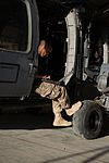 Pave Hawk maintainers keep rescue birds flying 150627-F-QN515-156.jpg