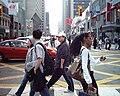 Pedestrians Crossing, Bloor and Yonge.jpg