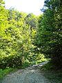 Peraldaccio-paesaggio 09.jpg