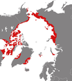 Phalaropus fulicarius distribution.png