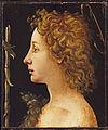Piero di Cosimo Jean Baptiste jeune MET+.jpg