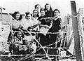 "PikiWiki Israel 1096 Israel Defense Forces עצורות האצ""ל במחנה המעצר בעתלית.jpg"