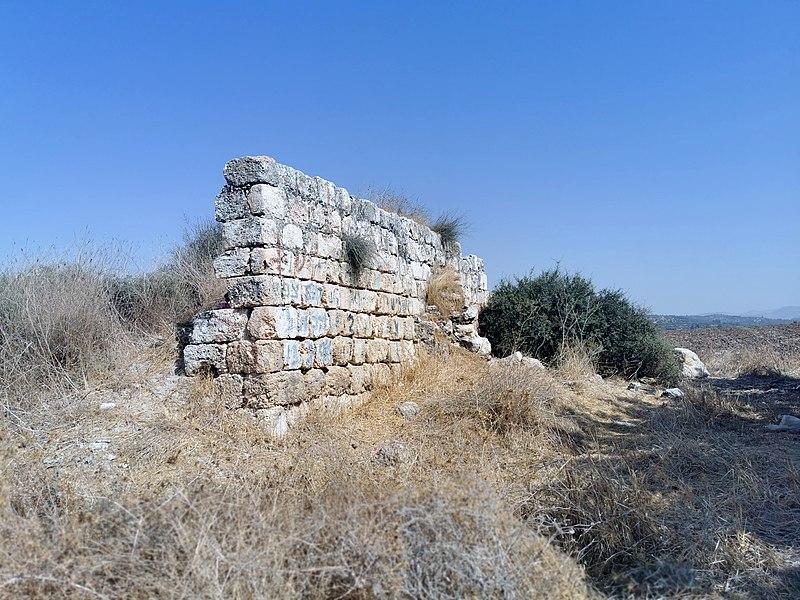 קיר קבר שיח