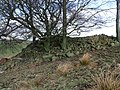 Pile of stanes - geograph.org.uk - 1763715.jpg