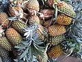 Pineapple - കൈതച്ചക്ക-6.JPG
