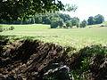 Plateau Cantal.JPG