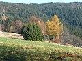 Podzim v Beskydech - panoramio.jpg