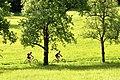 Poertschach Winklern Am Kåte Mountainbiking 14052012 922.jpg