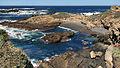 Point Lobos.jpg