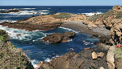Riserva naturale statale di Point Lobos