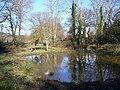 Pond, Grayswood - geograph.org.uk - 683015.jpg