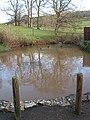 Pond in Ledbury Park - geograph.org.uk - 655782.jpg