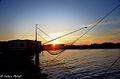 Porto Canale Leonardesco 3.jpg