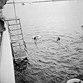 Prins Bernhard en een onbekende heer zwemmen naast het jacht, Bestanddeelnr 255-7636.jpg