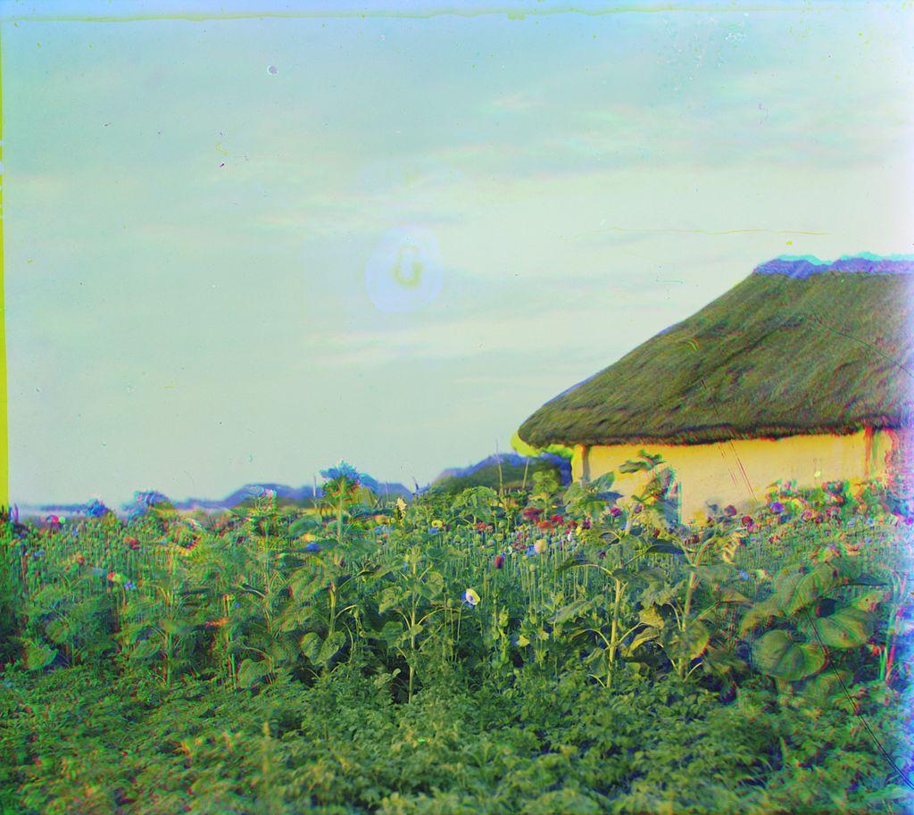 Prokudin-Gorskiy - V Malorosii 2.jpg