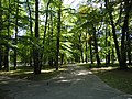 Prudnik, Poland - panoramio (41).jpg
