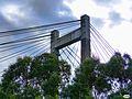 Puente de Rande-Entre árboles (10795763354).jpg
