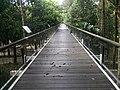 Putrajaya Botanical Garden in Malaysia 17.jpg