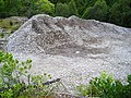 Quarry in Leanachan Forest - geograph.org.uk - 510544.jpg
