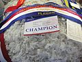 RAS Champion fleece 2009.JPG
