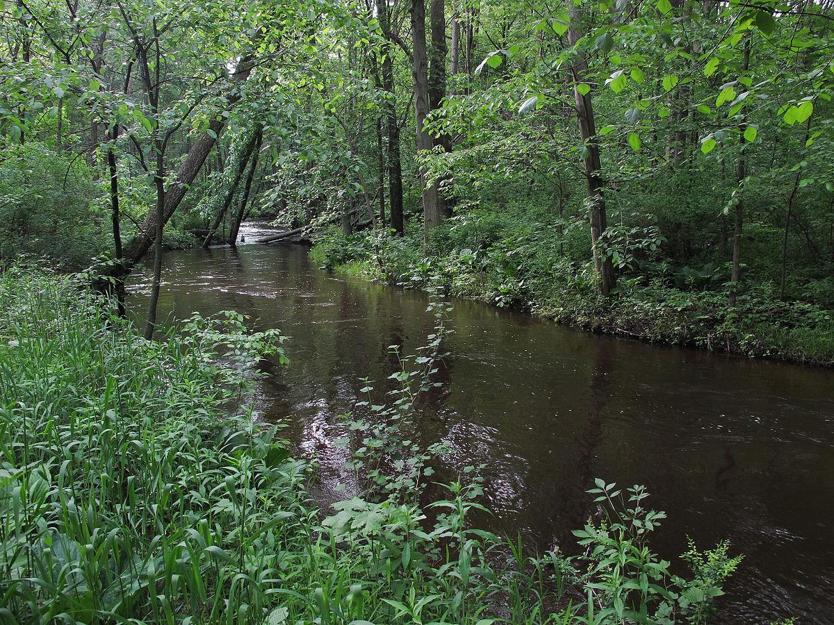 Dorr Township Michigan Assessor Property Search