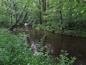 Rabbit River (Michigan) - The Rabbit River in Wayland