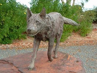 Australian folklore - Red Dog statue.