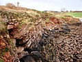 Red rock strata, Broadsands beach, Torbay - geograph.org.uk - 713991.jpg
