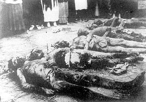 Soviet war crimes - Victims of the Red terror in Kherson 1918