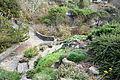 Regional Parks Botanic Garden - Berkeley, CA - DSC04501.JPG