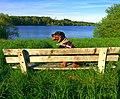 Relaxing - panoramio (1).jpg