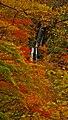 Remote view of Mikaeri Falls, Dakigaeri Gorge.jpg