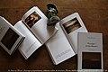 Renaud Camus - Paysages préposthumes - 2013.jpg