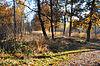 foto van Landweer, overblijfselen van middeleeuwse grens- en verdedigingswallen: Groote Heide