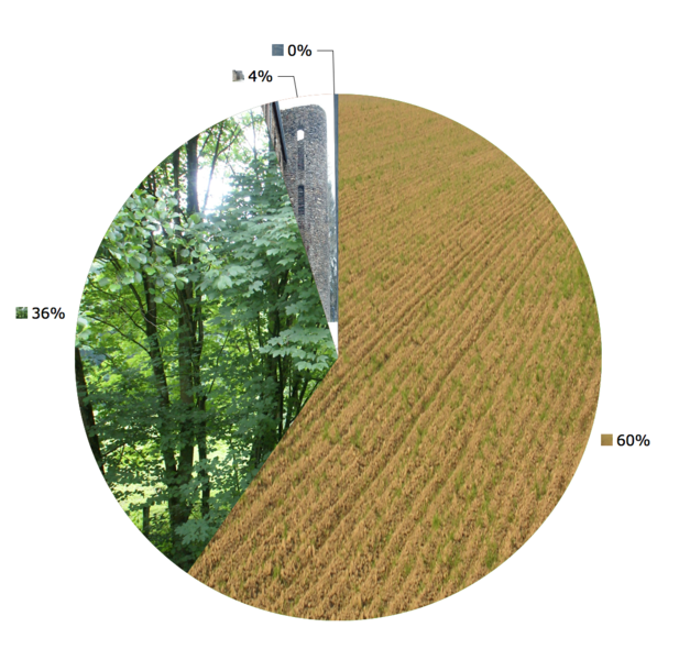 Burg-Reuland (Belgium): Land use in 2004: 60% agriculture, 36% forest;  4% construction, <1% others