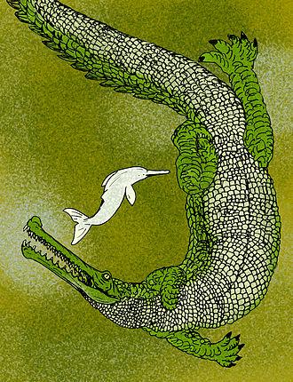 Rhamphosuchus - Image: Rhamphosuchus crassidens