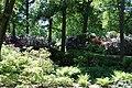 Rhododendronpark Bremen 20090513 219.JPG